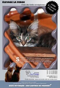 Flyer de La Forge 2010